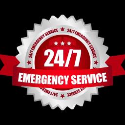 servicex256